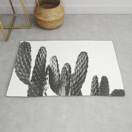 Cactus Photography Print {3 of 3}   B&W Succulent Plant Nature Western Desert Design Decor Rug