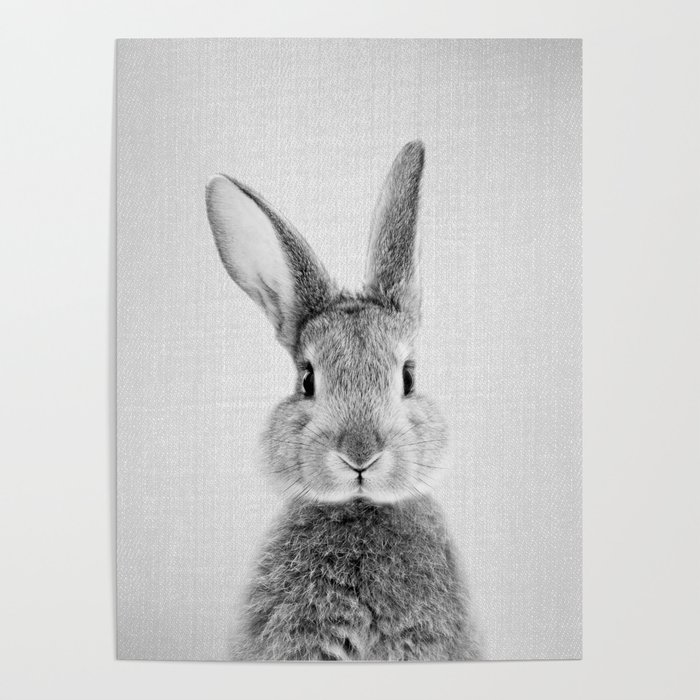 Rabbit - Black & White Poster