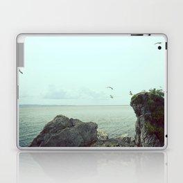 Flying on the rocks Laptop & iPad Skin