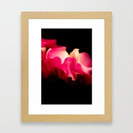 Lathyrus VI Framed Art Print