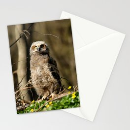 Approaching the podium Stationery Cards