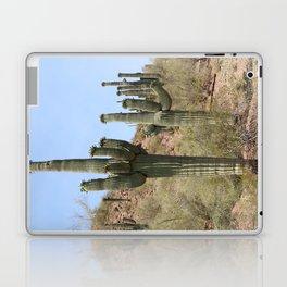 A Cacti in the Desert Laptop & iPad Skin