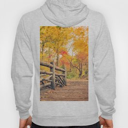 Autumn Path Central Park New York City Hoody