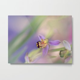 Wild orchid Metal Print