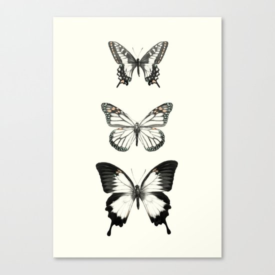 Butterflies // Align Canvas Print