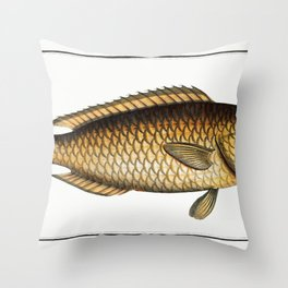 Snow covered mesh fence Throw Pillow