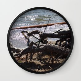 Roots of Huge Old Pine Tree Reaching Into The Lake Wall Clock