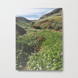 Wildflower Ravine Landscape Metal Print