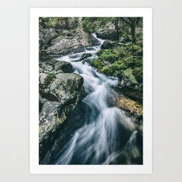 Wild river in Europe mountains Art Print
