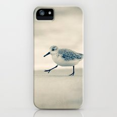 Beach Walk iPhone (5, 5s) Slim Case