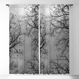 Grey sky, naked trees Blackout Curtain