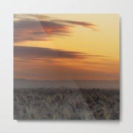Foggy Wheat Field Sunrise Metal Print