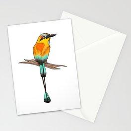 Motmot Bird Water Color & Ink Illustration Stationery Cards