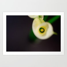 Lily Calla - Everyone Art Print