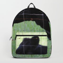 Fencing Cow Backpack