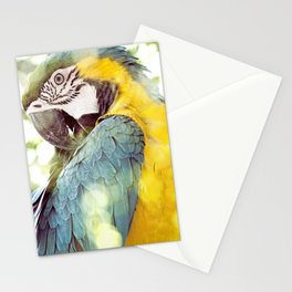 Magical Parrot - Guacamaya Variopinta - Magical Realism Stationery Cards