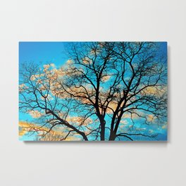 Leafless Tree In The Sunset IV Metal Print