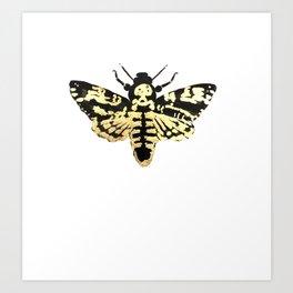 death hawk moth Art Print