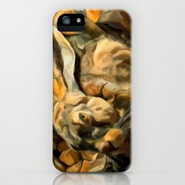 Splitting Hares iPhone Case