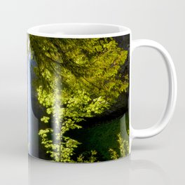 South Falls Coffee Mug
