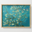 Vincent Van Gogh Blossoming Almond Tree by artgallery