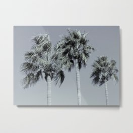 Palm Trees On A Windy Day Metal Print