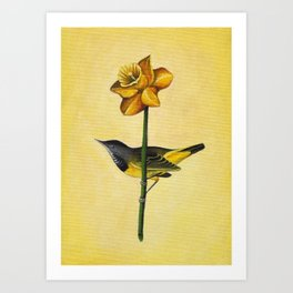 Daffodil & Bird Art Print