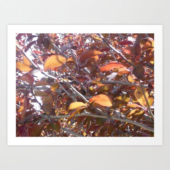 Kyrielle Art Print