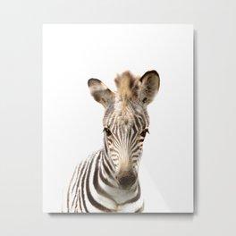 Baby Zebra Art Print by Zouzounio Art Metal Print