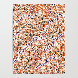 red topography Poster