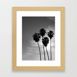 Palm Trees.  Framed Art Print
