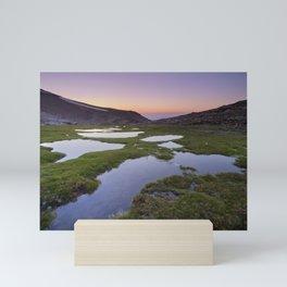 River San Juan lagoons at sunset Mini Art Print