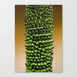 Future bananas Canvas Print