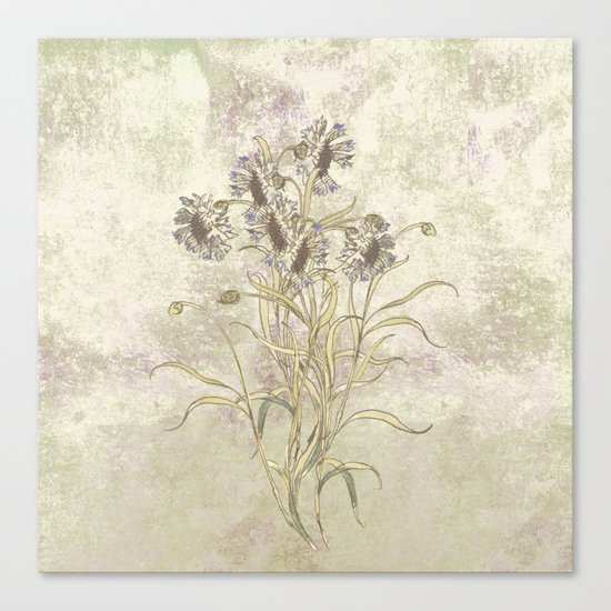 The flowers are singing Canvas Print