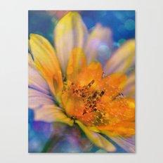 Dream-Flower Canvas Print