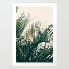 Southern Lines Art Print