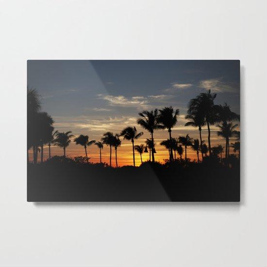 Sunseticus maximus  Metal Print