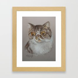 Exotic Cat Portrait Tabby Cat Pastel drawing Sketch on grey background Decor for Cat Lover Framed Art Print