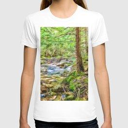 Swift river T-shirt