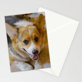 Josh The Corgi Stationery Cards
