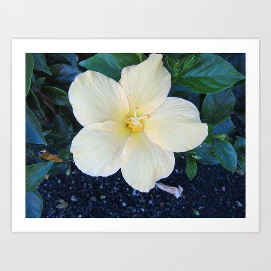 Lemony Cream Grace Art Print