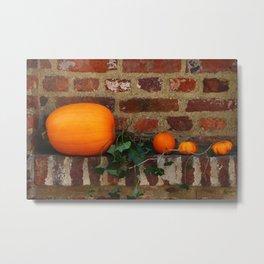 Gourds On A Windowsill Metal Print
