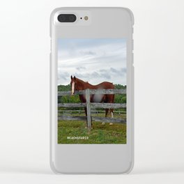 Horse Time Clear iPhone Case