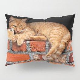 Orange Cat on Red Brick Wall Pillow Sham