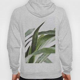Minimal Yucca Leaves Hoody