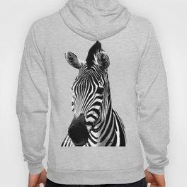 Zebra Black Hoody