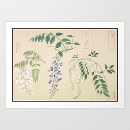 Japanese Botanical Ink and Brush Painting, Hand Drawing Flowers and Calligraphy Art Print