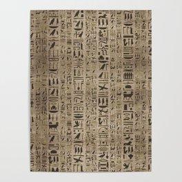 Egyptian hieroglyphs on wooden texture Poster