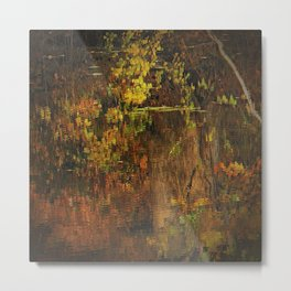 Hayes Pond Abstract ll Metal Print