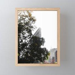 Flatiron Autumn Framed Mini Art Print